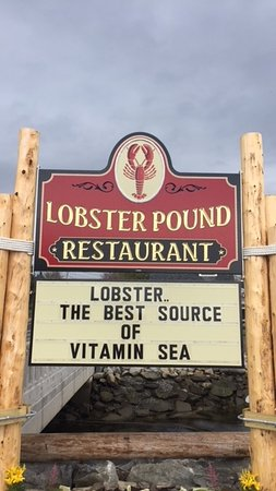 Lobster Pound Restaurant: We're really punny