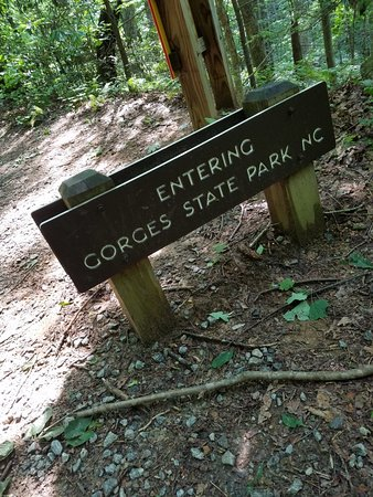 Gorges State Park Photo