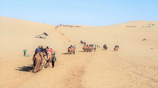 Mingsha Mountain: Camel riding