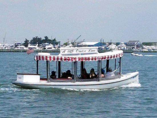 tiny cruise line cape may 2019 all you need to know before you rh tripadvisor com