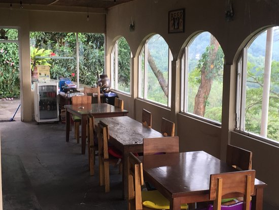 Manulalu Bed and Breakfast: Views over the gardens