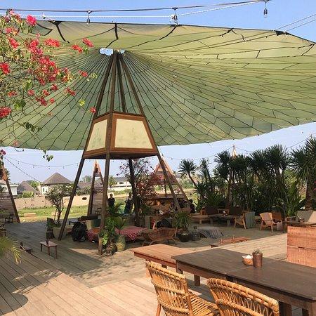 Parachute Bali照片