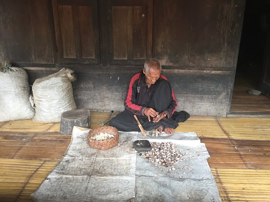 Bena Traditional Village: Sorting the nuts
