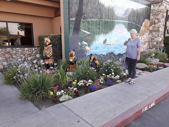 Tulare, CA: 20180605_182956_large.jpg