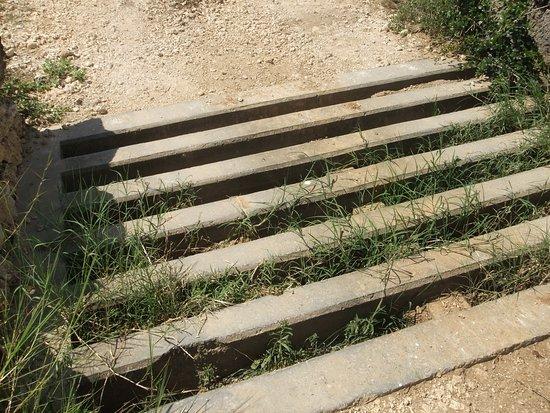 北牧場入口に有る逃亡防止のテキサスゲート