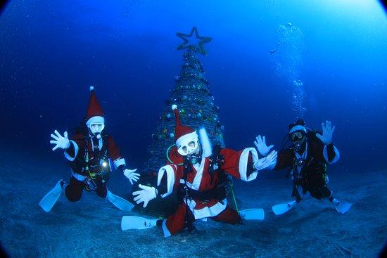 Izu Oceanic Park Diving Center - I.O.P.: Christmas Event