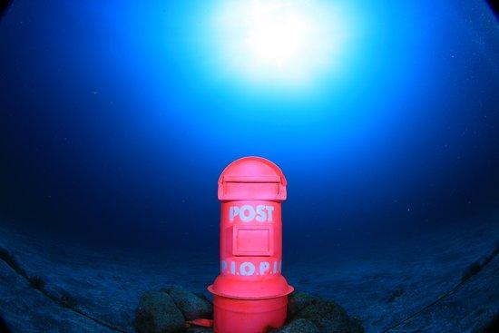 Izu Oceanic Park Diving Center - I.O.P.: Post Box Available