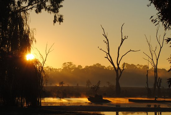 Cohuna, ออสเตรเลีย: Gunbower Creek at dawn