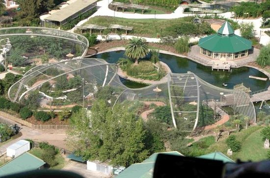 Superahorro: Temaiken Biopark, Tigre...