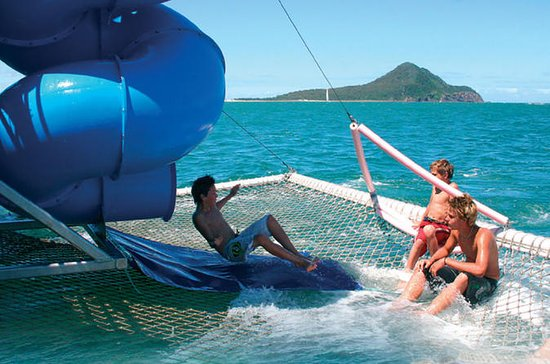 Port Stephens Dolphin Discovery Cruise