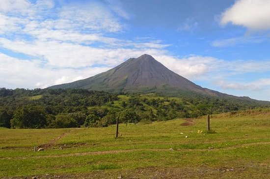 Arenal Volcano Day Tour and Tabacón Hot Springs From Guanacaste