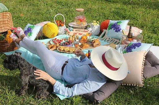 ビューでピクニック