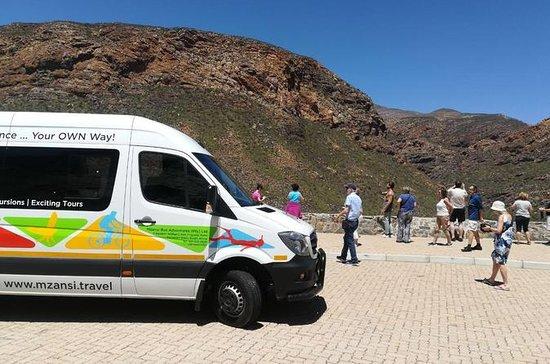 Pass touristique de 21 jours à arrêts multiples Mzansi - Le Cap Départ