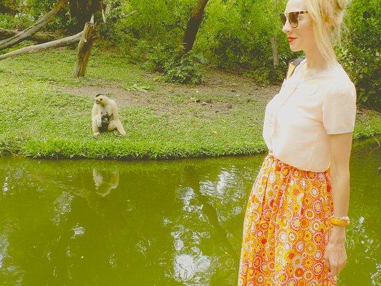 Khao Kheow Open Zoo : Открытый зоопарк Као Кео