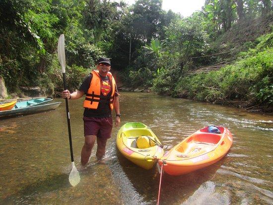 Semadang Kayak: Rainforest
