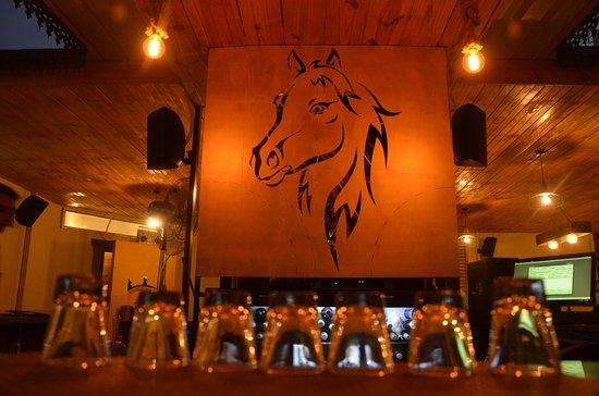 Stallion Sports Bar N Dine, first sports bar in Udaipur.