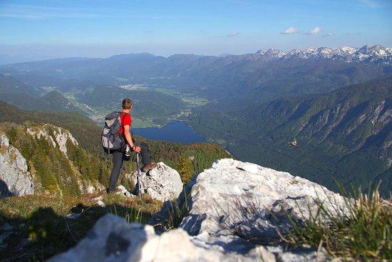 Bohinjsko Jezero, سلوفينيا: getlstd_property_photo