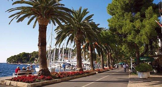 Cavtat Seaside Promenade照片
