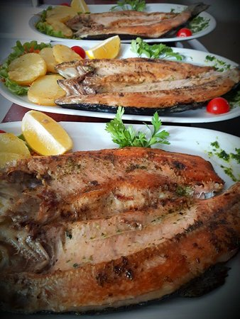 Jadica Fish & Grill: Trout