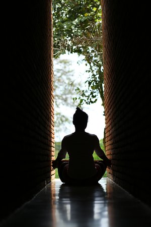 Sigirya Jungles : Yoga and meditation