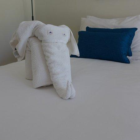 Uga Bay by Uga Escapes : lovely Elephant