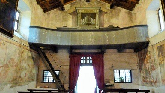 Chiesa di San Marco Varallo: Entrata e cantoria