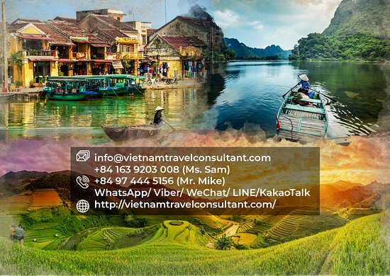 Vietnam Travel Consultant
