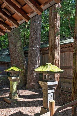 Suwa Shrine: Suwa Taisha