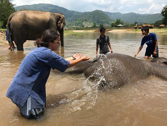 Elephant Conservation Park