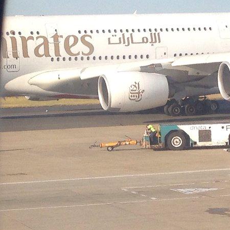 阿联酋航空照片