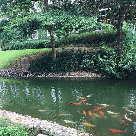 Thames Valley Khao Yai Photo