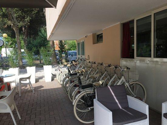 Unique Hotel: Biciclette a disposizione molto comode e nuovissime!!!