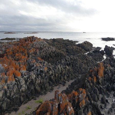 Rocky Cape, Australia: photo6.jpg