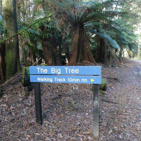 Mawbanna, Αυστραλία: photo4.jpg