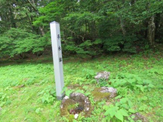Togokusan Senju-ji Temple Ruins : 手水鉢