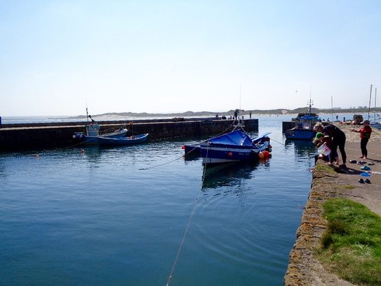 Crabbing in Beadnell harbour