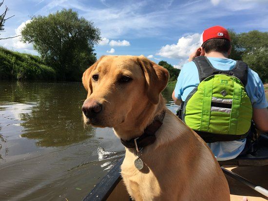 Ross on Wye Canoe Hire: She was very interested in other boats