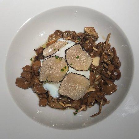 Restaurante Bosque Photo