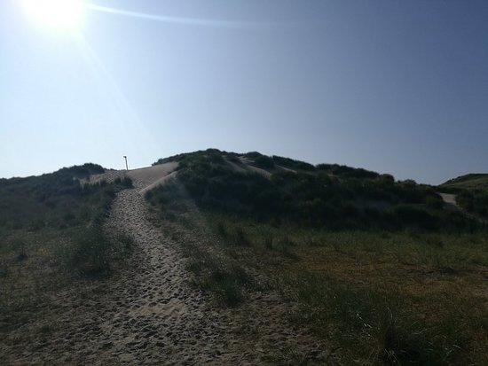 Nationaal Park Duinen van Texel ภาพถ่าย