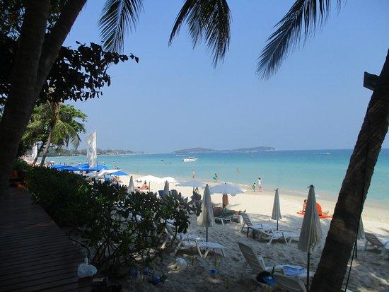 Synergy Samui: Praia do Synergy (foto 4)