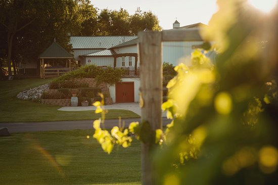 Carlos Creek Winery: Looking west towards the Carlos Creek tasting room.