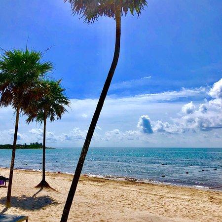 Foto de Paradisus Playa del Carmen La Perla