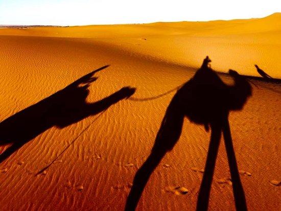 Excursion privée dans le désert du Sahara au départ de Marrakech : Our camel ride to the dunes