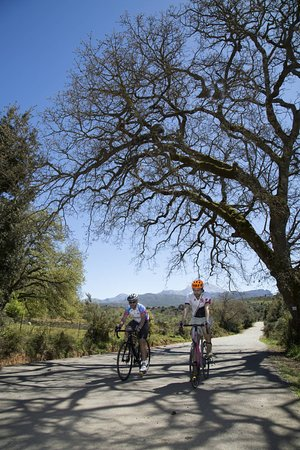 Ibiscos Garden Hotel: Cycling Tours & Activities