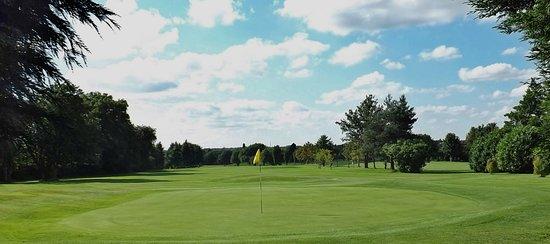 Whetstone Golf Club: 8th Hole