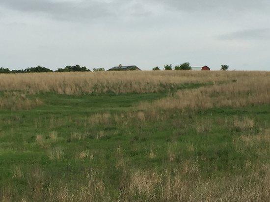 Springdale Inn: prairie