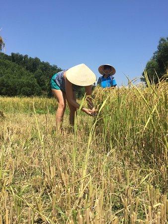 Phong Nha Booking Tour: farmer