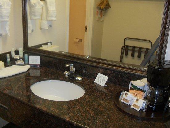 Clarion Hotel Palmer Inn : Bathroom area