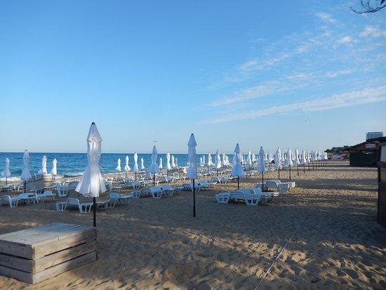Grifid Club Hotel Arabella: La plage