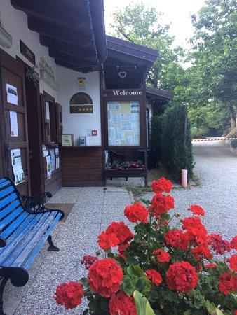 Campeggio Parco dei Castagni: Accoglienza clienti